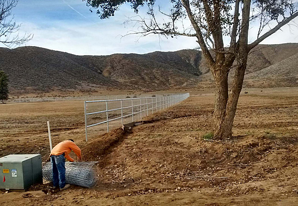Live Stock Fence